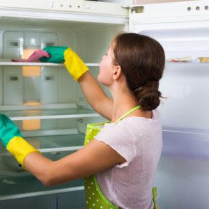 inteior fridge cleaning