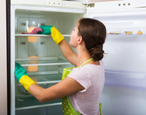 inteior fridge cleaning